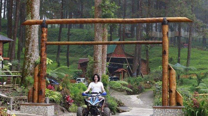 Daftar Tempat Wisata di Banyumas yang Sudah Dibuka, Hutan Pinus Limpakuwus hingga Taman Sentana