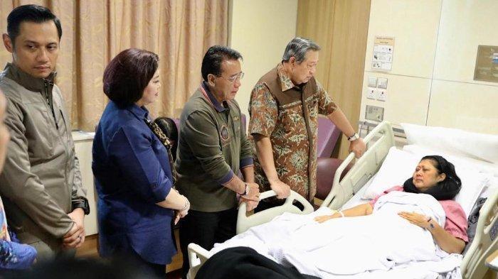 Mengenal Penyakit Kanker Darah yang Diderita Ani Yudhoyono, Jenis dan Cara Pengobatannya