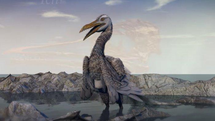 Hidup 100 Juta Tahun Lalu di Amerika, Inikah Burung Pertama di Bumi yang Punya Paruh Bagai Dinosaur