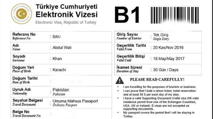Panduan Lengkap Cara Membuat Visa Turki Agar Cepat Diterima