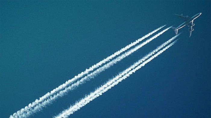 Mewahnya Flying Kremlin, Jet Milik Presiden Rusia Vladimir Putin Seharga Rp 7,7 Triliun