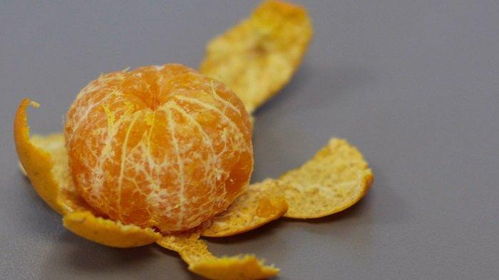 Ilustrasi buah jeruk yang kaya vitamin