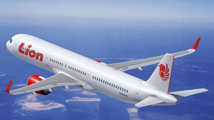 Ilustrasi Maskapia Penerbangan Lion Air (Tribunnews.com)