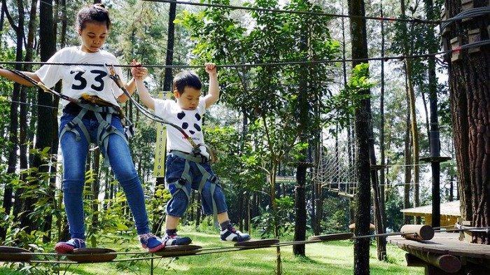 5 Tempat Wisata Alam Dekat Cimory Dairyland Prigen, Mampir Sejenak ke Tretes Treetop Adventure Park