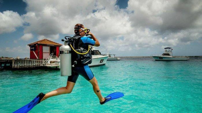 Ilustrasi wisata menyelam