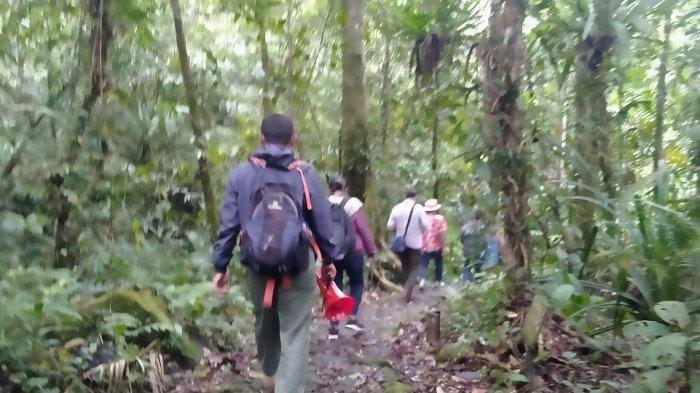 Dua Hari Tersesat di Gunung Geulis, Pendaki Ditemukan di Daerah Angker Tubuhnya Dikerumuni Semut