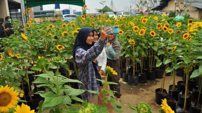 TRAVEL UPDATE: Bogor Sky Garden, Wisata Alam di Dalam Mall BTM yang Instagramable