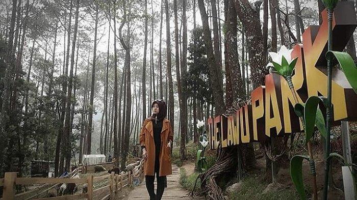 Ilustrasi spot foto Instagramable di The Lawu Park, Tawangmangu