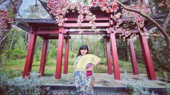 HTM dan Jam Buka Sakura Hills Tawangmangu Terbaru 2021, Ada Promo Supercamp Cuma Rp 350 Ribu