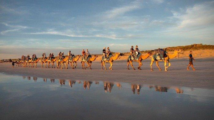 4 Kegiatan Seru saat Liburan ke Broome Australia, Wajib Kunjungi Teater Film Outdoor Tertua di Dunia