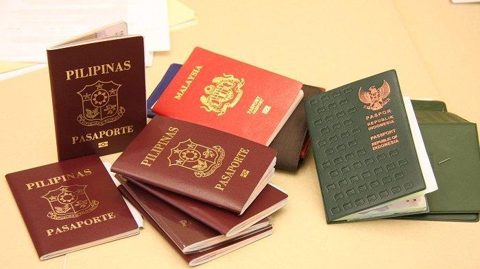 Ilustrasi perbedaan warna paspor