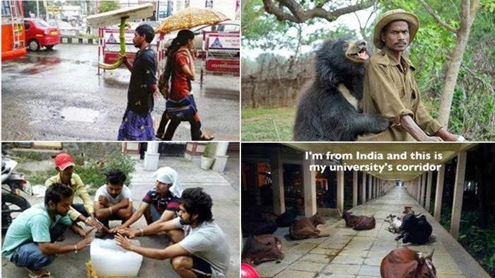 Absurd! Begini Pemandangan Unik yang Hanya Ada di India, Nomor 8 Bikin Nyengir Seharian