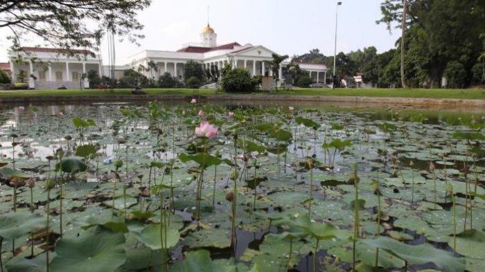 4 Tempat Wisata Instagramable di Bogor, Ada Kampung Eropa di Devoyage