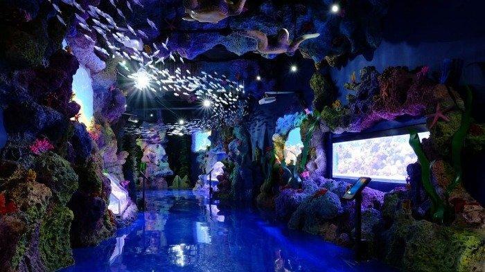 Baru, Harga Tiket Masuk Jakarta Aquarium Neo Soho per Oktober 2020