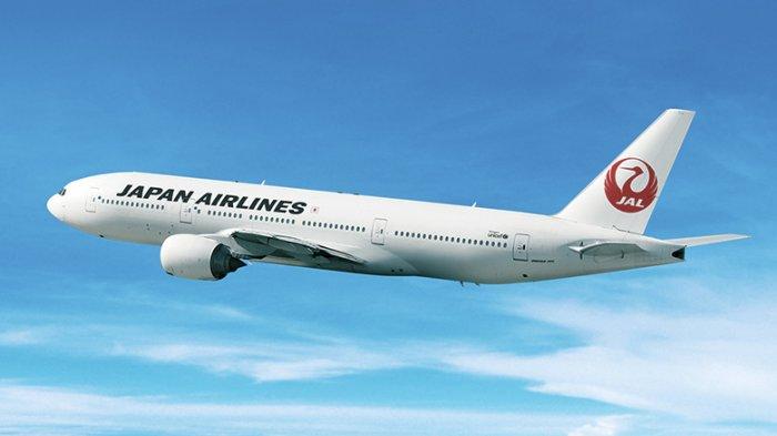 4 Fasilitas yang Bisa Dinikmati Penumpang Japan Airlines, Wifi di Pesawat hingga Kursi yang Luas
