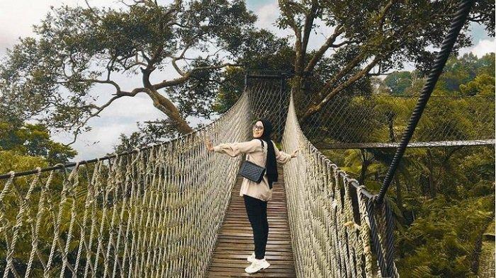 Jembatan Gantung di Bukit Halimun