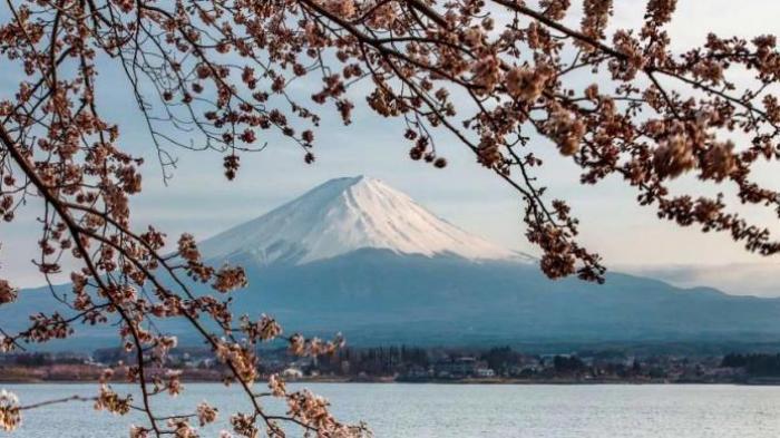 Traveling Jepang - Tiru 3 Cara Sukses Dapatkan Penginapan Murah, Bahkan Gratis di Negara Sakura!