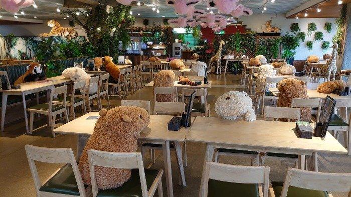 Terapkan Sosial Distancing, Kafe di Kebun Binatang Jepang Ini Gunakan Boneka Buat Temani Tamu