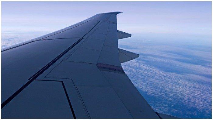 Ilustrasi kait sayap pesawat
