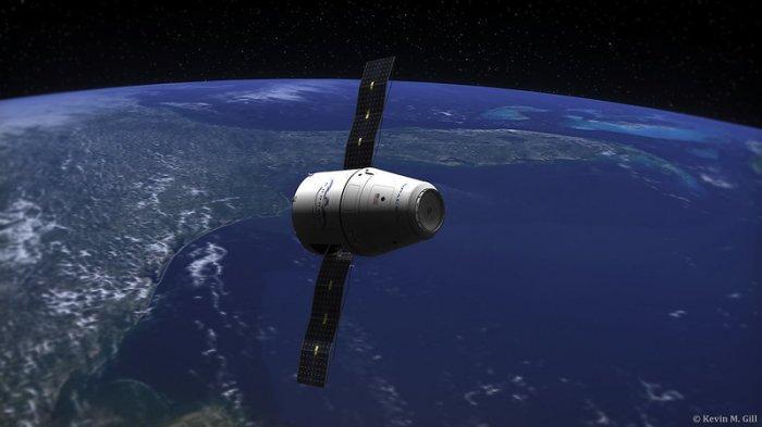 Roket SpaceX Bawa Semut hingga Udang ke Luar Angkasa, Apa Tujuannya?