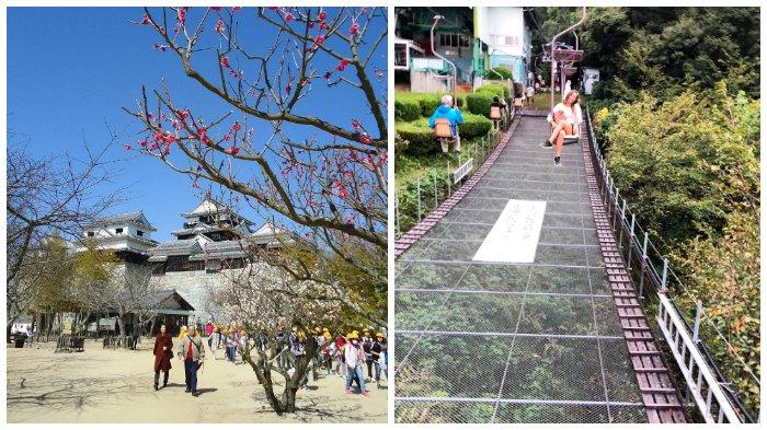 Melihat Keindahan Kastil Matsuyama, Kastil Bersejarah di Jepang dengan 200 Pohon Sakura