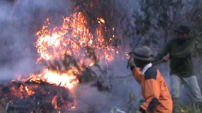Agustus Lalu Kebakaran Akibat Ulah Pendaki, Hutan Kawasan Gunung Lawu Kini Terbakar Lagi