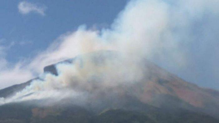 Padang Ilalang Gunung Sindoro Terbakar, Jalur Pendakian Ditutup Sementara untuk Wisatawan