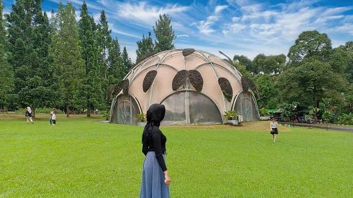 Harga Tiket Masuk dan Jam Buka Kebun Raya Bogor 2020