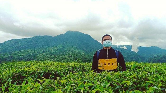 TRAVEL UPDATE: Rute Menuju Kebun Teh Cianten Bogor, Wisata Alam di Kaki Gunung Halimun Salak