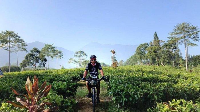 TRAVEL UPDATE: Kebun Teh Gunung Mas, Destinasi Wisata di Puncak Bogor