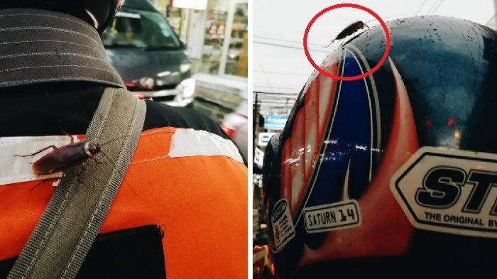 Wanita Ini Syok saat Tiba-tiba Lihat Kecoa di Punggung dan Helm Tukang Ojek, Ceritanya di FB Viral