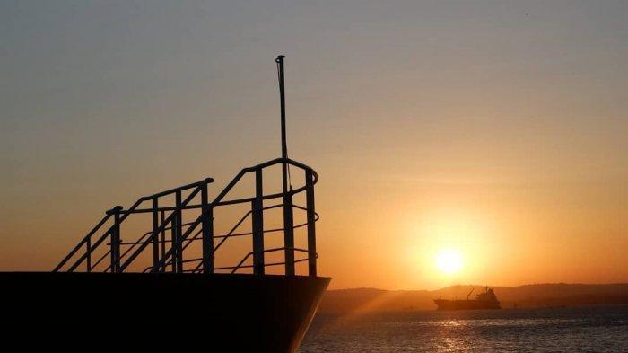 Pelni Operasikan Kapal Khusus Ternak, Mampu Angkut Lebih dari 500 Ekor Sapi Sekali Jalan