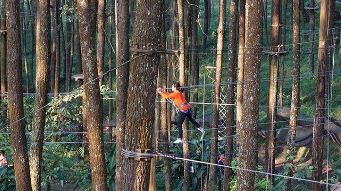 Harga Tiket Masuk Kopeng Treetop Semarang, Lengkap dengan Paket Outbond untuk Libur Akhir Tahun
