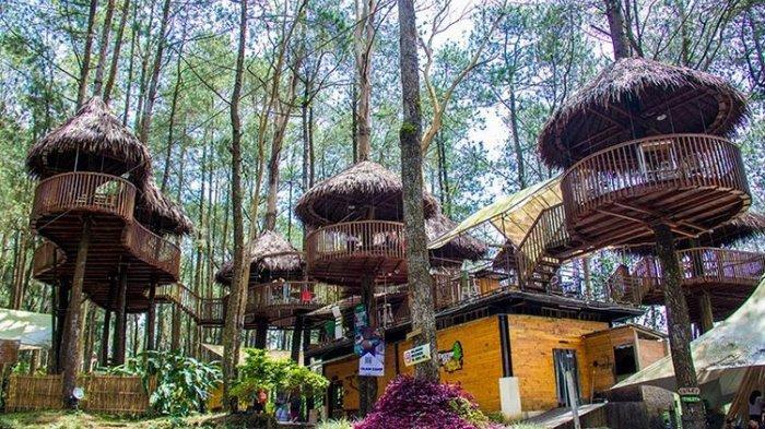 Harga Tiket Masuk Kopeng Treetop Semarang 2021, di Dalamnya Ada Kafe Rumah Pohon yang Instagramable