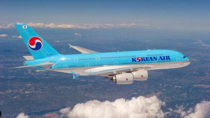 10 Rute Penerbangan Domestik Tersibuk di Dunia Selama Pandemi Covid-19