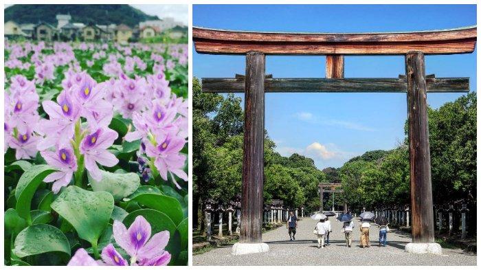 2 Tempat yang Harus Dikunjungi Saat Berada di Nara, Kota di Jepang yang Terkenal dengan Taman Rusa