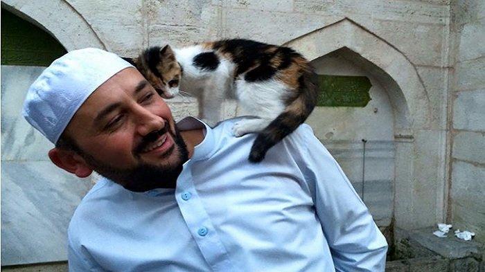 Masjid di Istanbul Turki jadi Rumah yang Hangat Bagi Kucing-kucing Liar