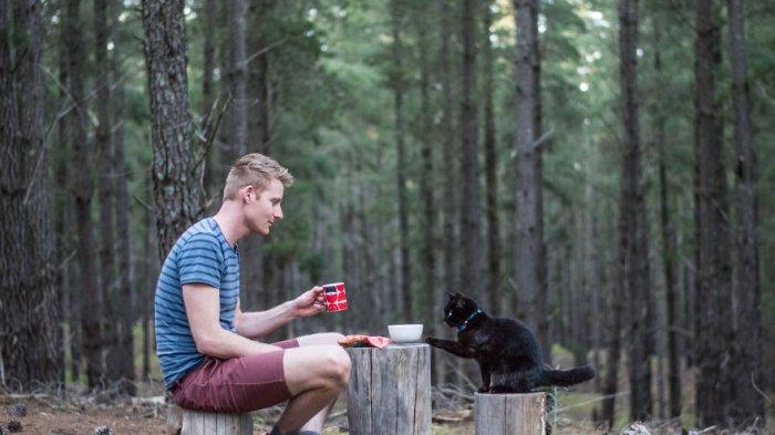 Keren! Ini Dia Kucing Pelancong Paling Keren yang Udah Keliling Australia, Simak Gayanya