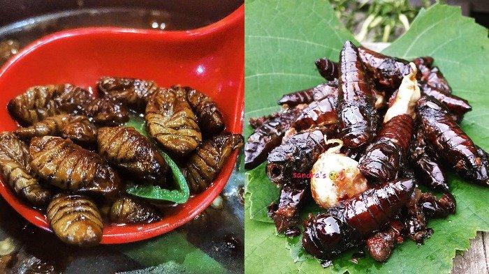 5 Kuliner Serangga Terekstrem di Dunia, Ada Kecoak Goreng sampai Kepompong Ulat Sutra Rebus