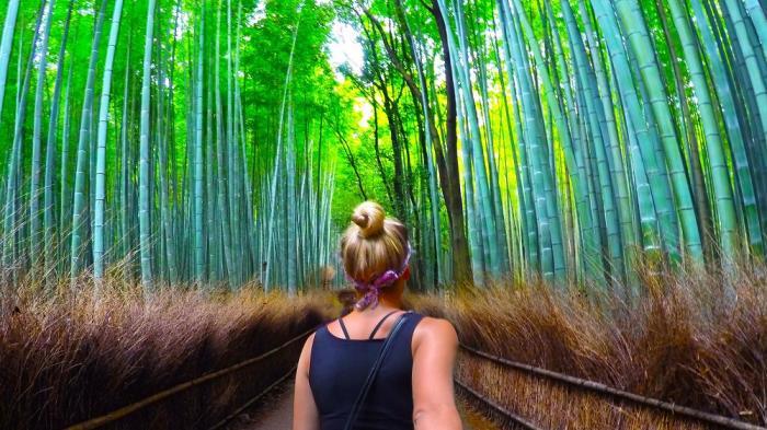 Panduan Liburan ke Kyoto Jepang, Cocok Bagi Kamu yang Ingin Melakukan Solo Traveling