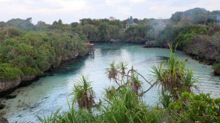 Indahnya Laguna Weekuri, Kolam Renang Alami di Sumba yang Punya Air Jernih