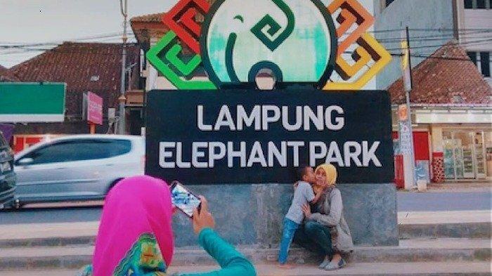 6 Tempat Ngabuburit Seru di Bandar Lampung, Ada Taman Kota hingga Lampung Elephant Park