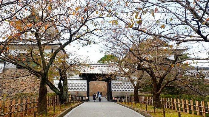 Jepang Berencana Buka Kembali Pariwisata, Bakal Ada Subsidi Tiket Pesawat untuk Para Turis