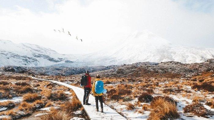 5 Hal yang Bisa Dilakukan Saat Liburan Musim Dingin di Selandia Baru