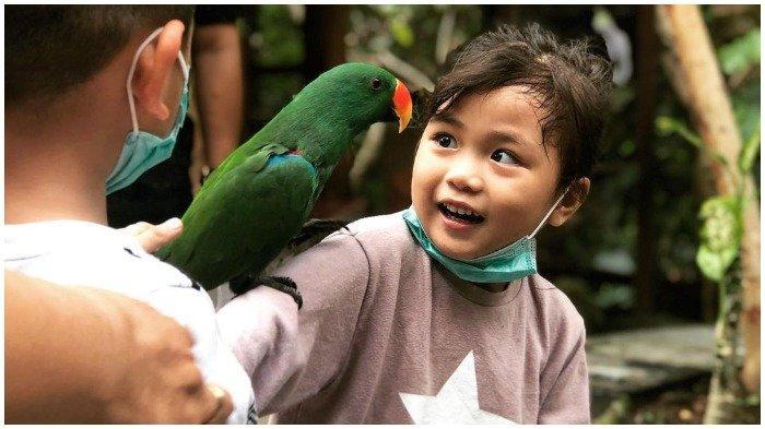 TRAVEL UPDATE : Lombok Wildlife Park, Kebun Binatang Pertama di Lombok untuk Liburan Akhir Pekan