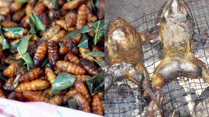 Makanan aneh di India