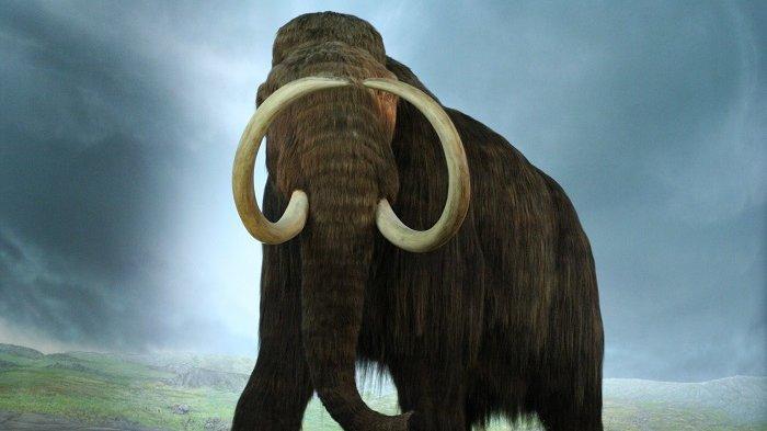 Urutan DNA Tertua di Dunia Ditemukan pada Gigi Mammoth yang Hidup Lebih dari 1 Juta Tahun Lalu