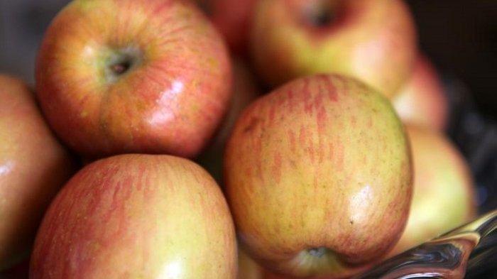 Apel ternyata memiliki banyak manfaat kesehatan yang jarang diketahui.