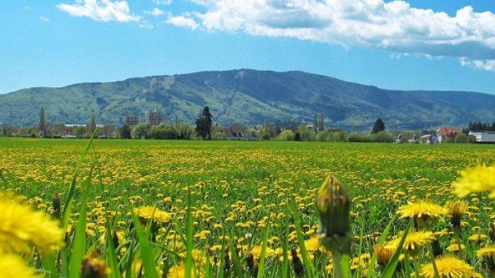 4 Tempat Wisata di Kota Kelahiran Rene Mihelic, Gelandang Baru Persib