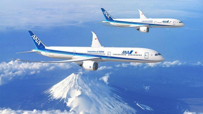 7 Maskapai yang Layani Penerbangan Wisata, Bisa Lihat Gunung Fuji dan Antartika dari Ketinggian